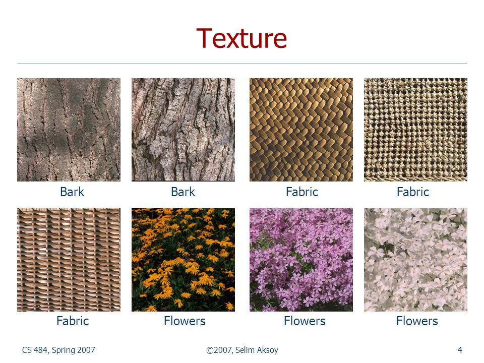 CS 484, Spring 2007©2007, Selim Aksoy4 Texture Bark Bark Fabric Fabric Fabric Flowers Flowers Flowers