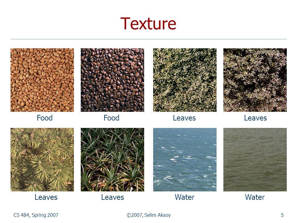 CS 484, Spring 2007©2007, Selim Aksoy5 Texture Food Food Leaves Leaves Leaves Leaves Water Water