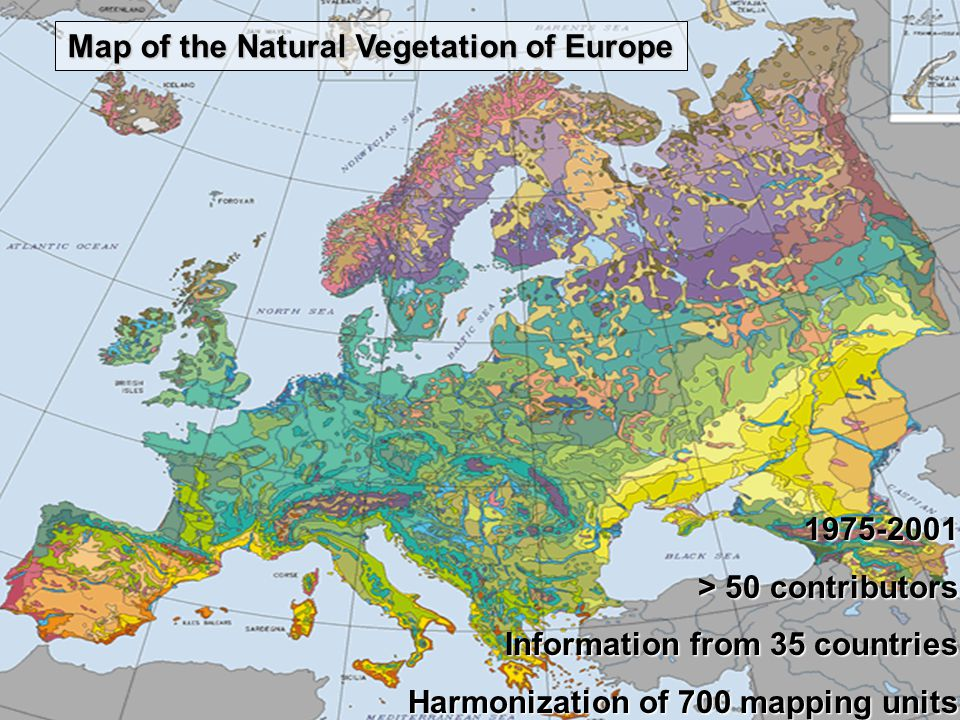 1975-2001 > 50 contributors Information from 35 countries Harmonization of 700 mapping units Map of the Natural Vegetation of Europe