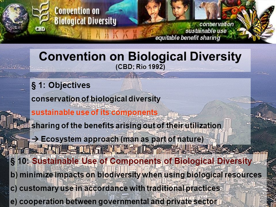 § 1: Objectives conservation of biological diversity sustainable use of its components sharing of the benefits arising out of their utilization Ecosystem approach (man as part of nature) § 10: Sustainable Use of Components of Biological Diversity b) minimize impacts on biodiversity when using biological resources c) customary use in accordance with traditional practices e) cooperation between governmental and private sector Convention on Biological Diversity (CBD; Rio 1992)