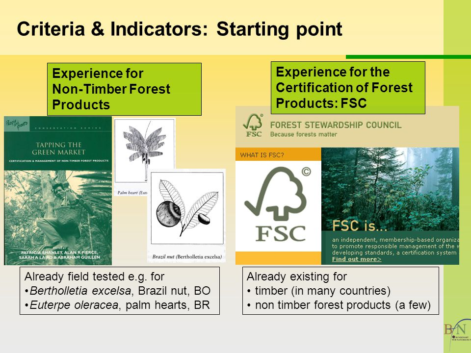 Criteria & Indicators: Starting point Experience for Non-Timber Forest Products Already field tested e.g.