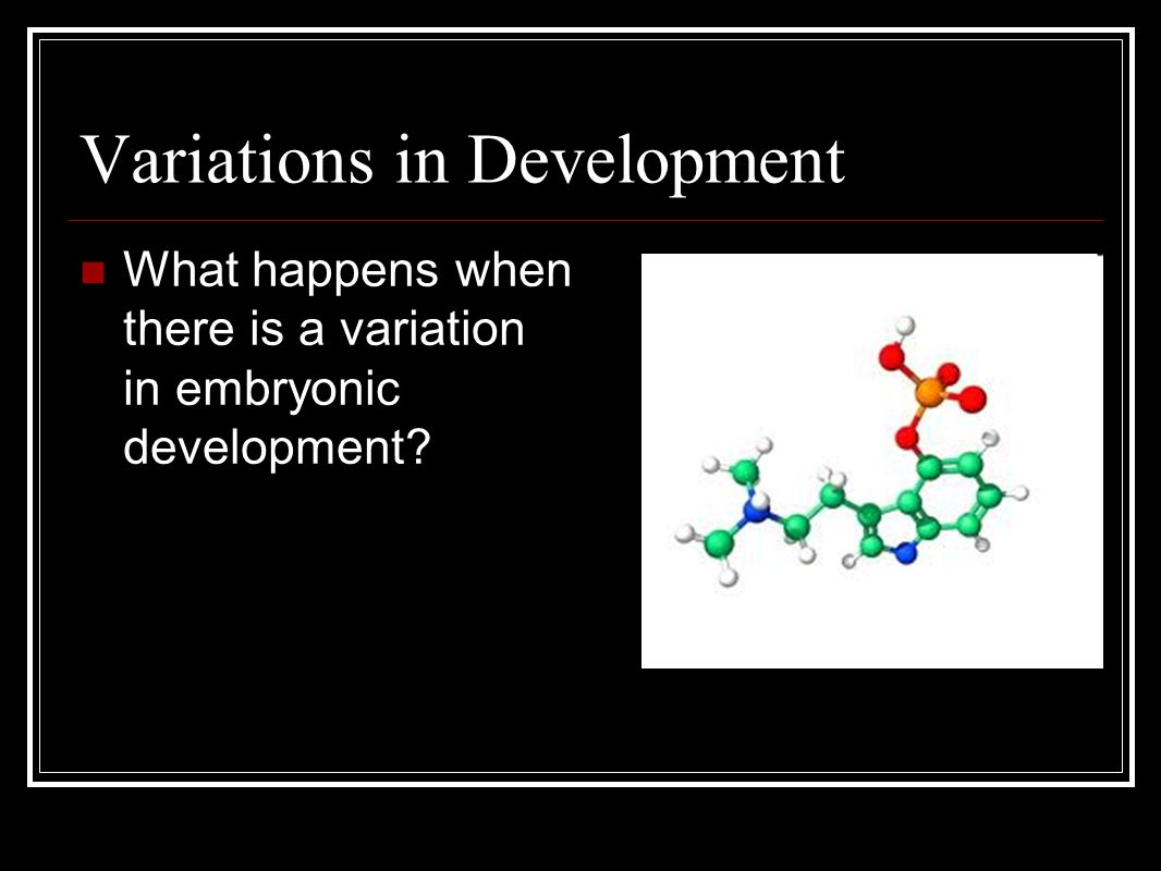 Variations in Development What happens when there is a variation in embryonic development?