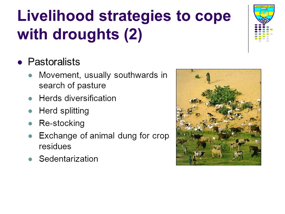 Livelihood strategies to cope with droughts (2) Pastoralists Movement, usually southwards in search of pasture Herds diversification Herd splitting Re-stocking Exchange of animal dung for crop residues Sedentarization
