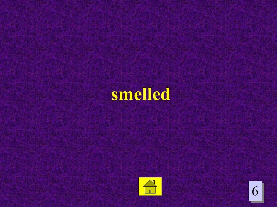 6 6 smelled