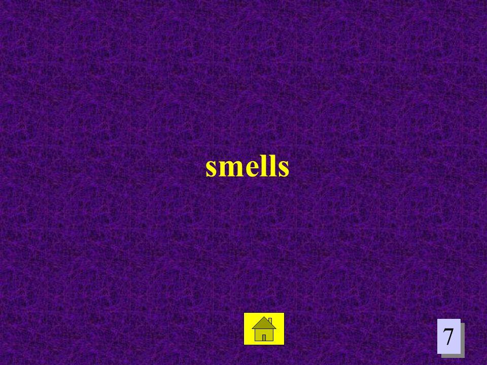 7 7 smells