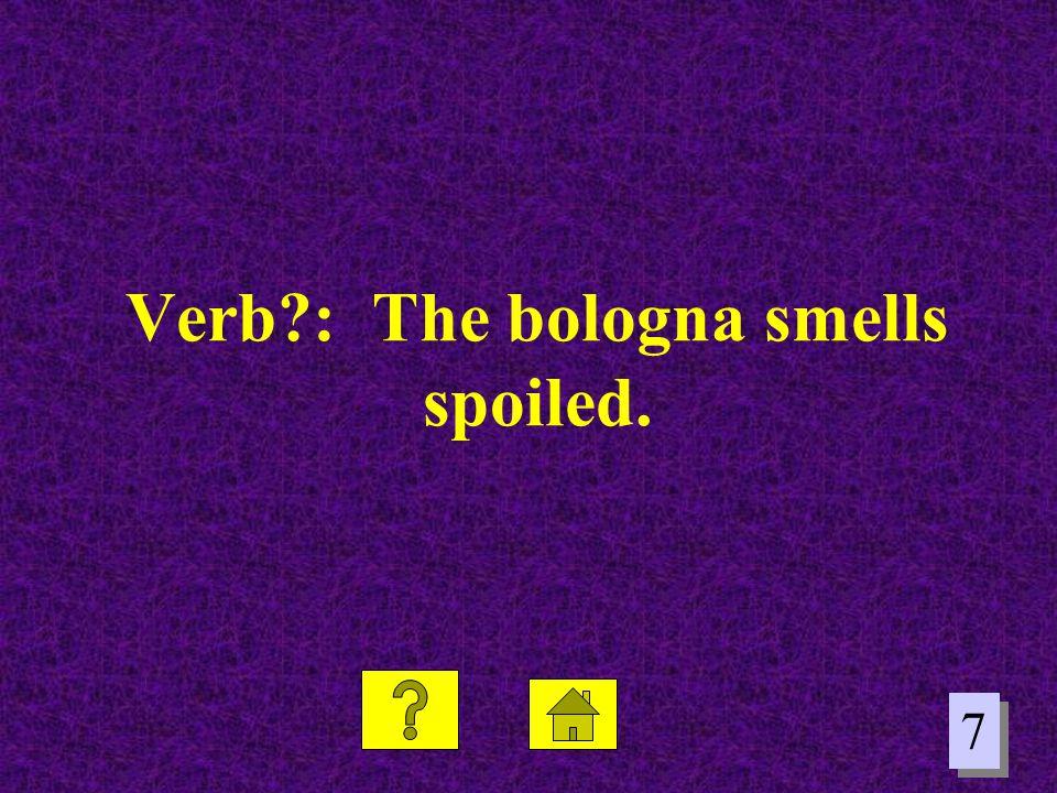 7 7 Verb?: The bologna smells spoiled.