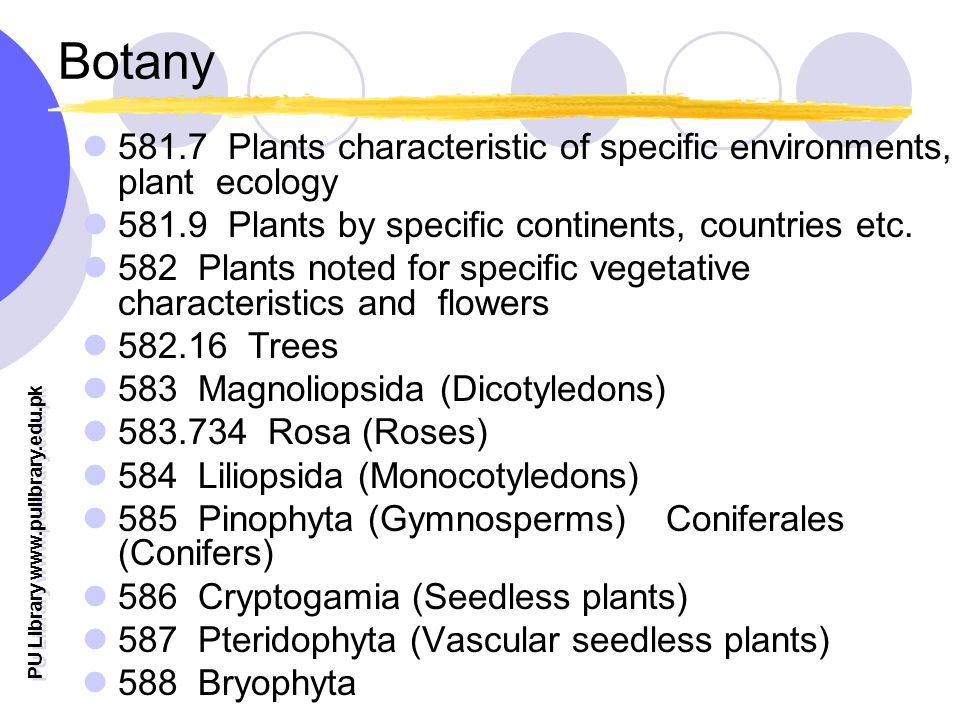 PU Library   Botany Plants characteristic of specific environments, plant ecology Plants by specific continents, countries etc.