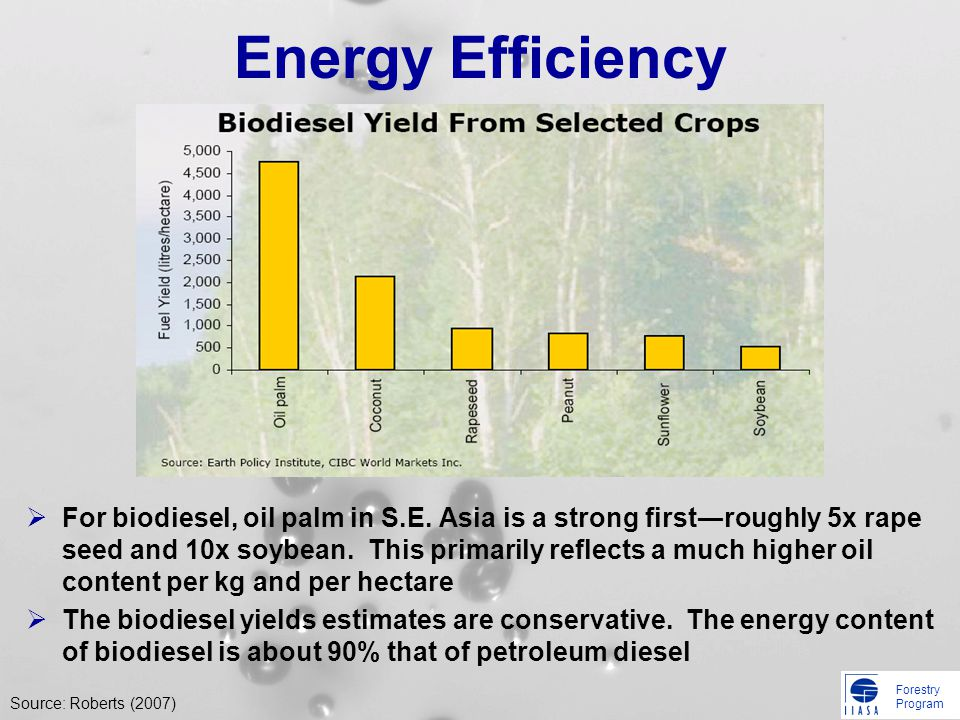 Forestry Program Energy Efficiency For biodiesel, oil palm in S.E. Asia is a strong firstroughly 5x rape seed and 10x soybean. This primarily reflects