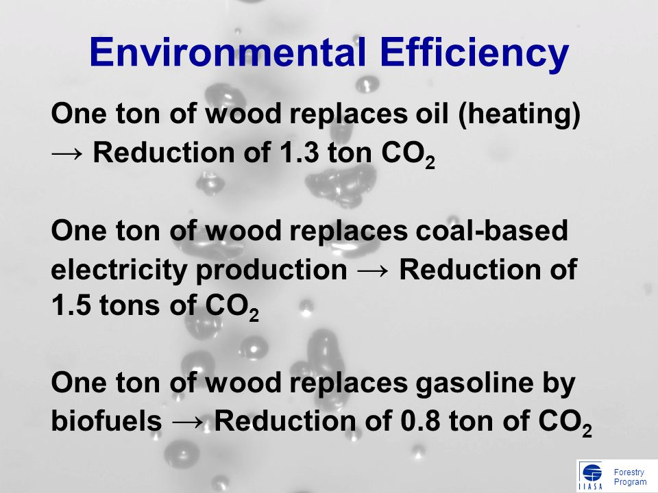 Forestry Program Environmental Efficiency One ton of wood replaces oil (heating) Reduction of 1.3 ton CO 2 One ton of wood replaces coal-based electri