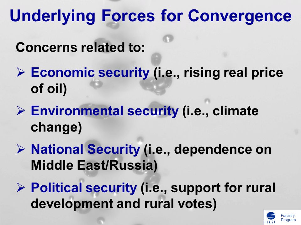 Forestry Program Underlying Forces for Convergence Economic security (i.e., rising real price of oil) Environmental security (i.e., climate change) National Security (i.e., dependence on Middle East/Russia) Political security (i.e., support for rural development and rural votes) Concerns related to: