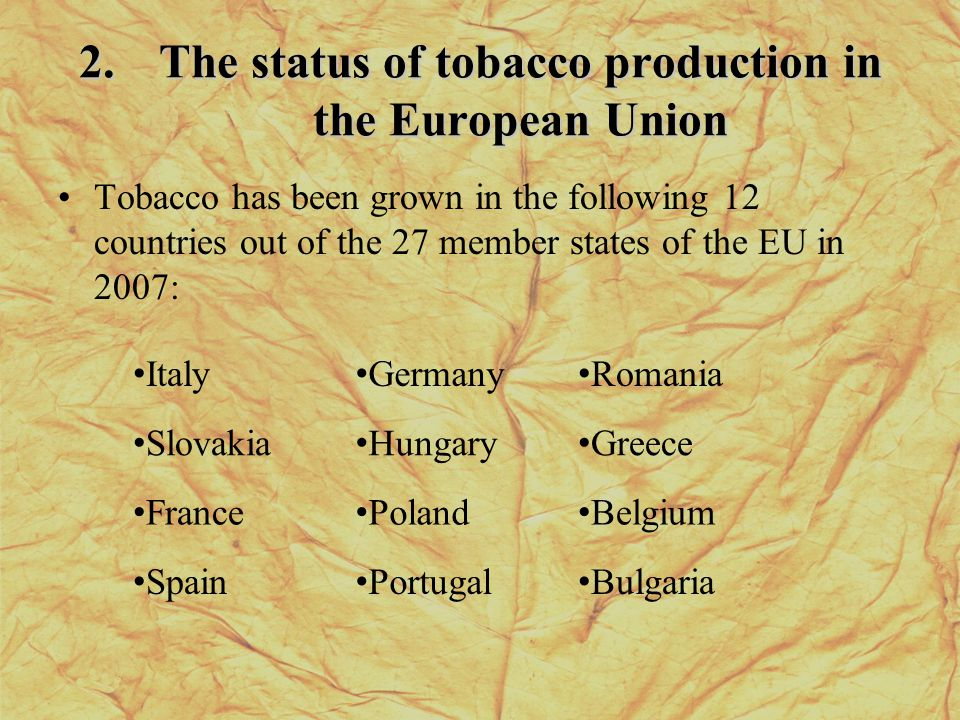 2.The status of tobacco production in the European Union Tobacco has been grown in the following 12 countries out of the 27 member states of the EU in 2007: Italy Germany Romania Slovakia Hungary Greece France Poland Belgium Spain Portugal Bulgaria