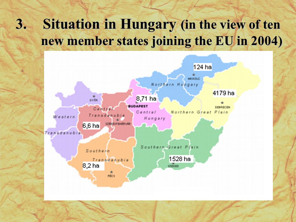 3.Situation in Hungary (in the view of ten new member states joining the EU in 2004)
