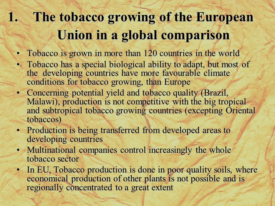 1.The tobacco growing of the European Union in a global comparison Tobacco is grown in more than 120 countries in the worldTobacco is grown in more than 120 countries in the world Tobacco has a special biological ability to adapt, but most of the developing countries have more favourable climate conditions for tobacco growing, than EuropeTobacco has a special biological ability to adapt, but most of the developing countries have more favourable climate conditions for tobacco growing, than Europe Concerning potential yield and tobacco quality (Brazil, Malawi), production is not competitive with the big tropical and subtropical tobacco growing countries (excepting Oriental tobaccos)Concerning potential yield and tobacco quality (Brazil, Malawi), production is not competitive with the big tropical and subtropical tobacco growing countries (excepting Oriental tobaccos) Production is being transferred from developed areas to developing countriesProduction is being transferred from developed areas to developing countries Multinational companies control increasingly the whole tobacco sectorMultinational companies control increasingly the whole tobacco sector In EU, Tobacco production is done in poor quality soils, where economical production of other plants is not possible and is regionally concentrated to a great extentIn EU, Tobacco production is done in poor quality soils, where economical production of other plants is not possible and is regionally concentrated to a great extent