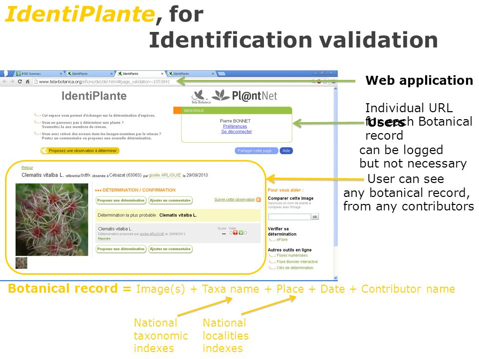 IdentiPlante, for Identification validation Web application Individual URL for each Botanical record Users can be logged but not necessary User can see any botanical record, from any contributors Botanical record = Image(s) + Taxa name + Place + Date + Contributor name National taxonomic indexes National localities indexes