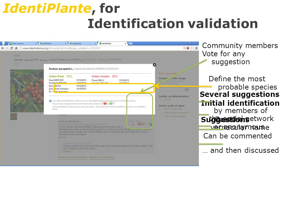 IdentiPlante, for Identification validation Initial identification Based on vernacular name Several suggestions by members of the social network or anonymous Suggestions Can be commented … and then discussed Community members Vote for any suggestion Define the most probable species