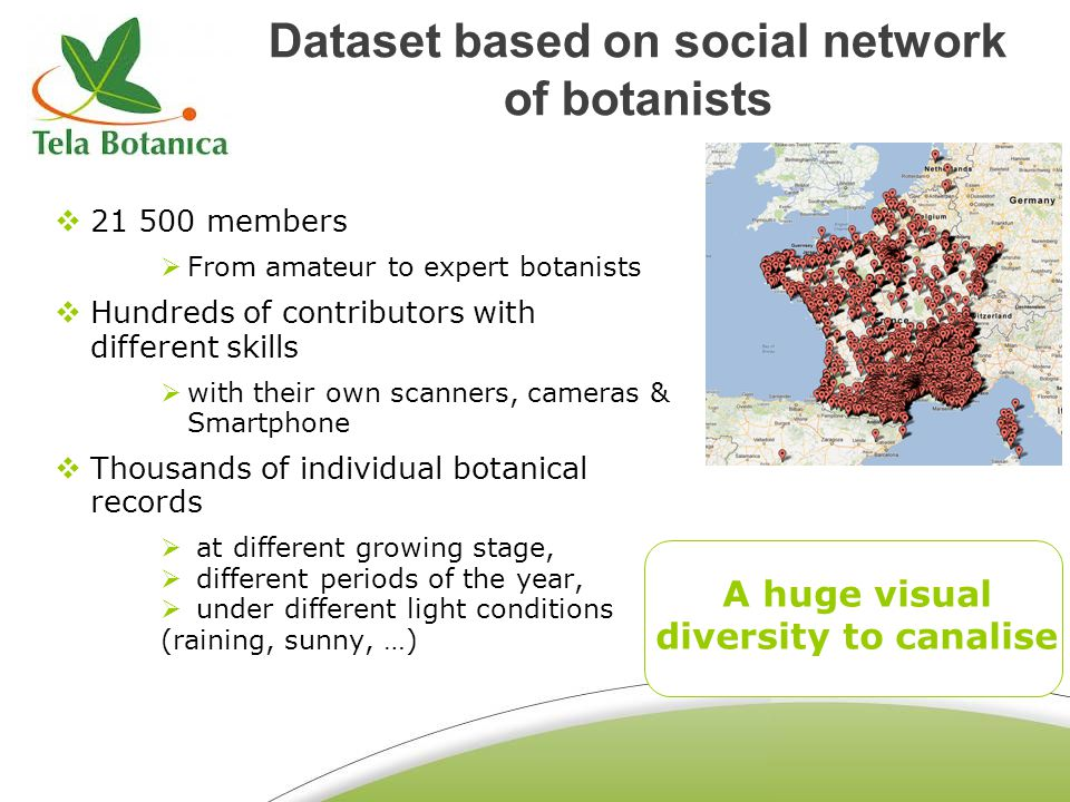Dataset based on social network of botanists 21 500 members From amateur to expert botanists Hundreds of contributors with different skills with their own scanners, cameras & Smartphone Thousands of individual botanical records at different growing stage, different periods of the year, under different light conditions (raining, sunny, …) A huge visual diversity to canalise
