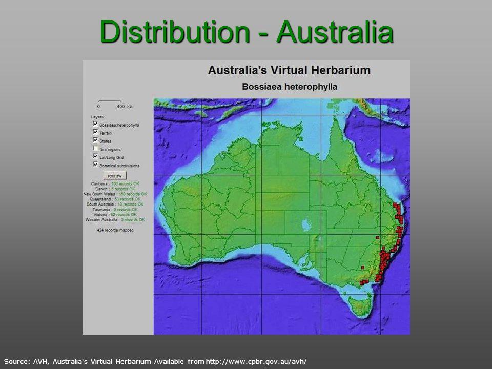 Distribution - Australia Source: AVH, Australia's Virtual Herbarium Available from http://www.cpbr.gov.au/avh/