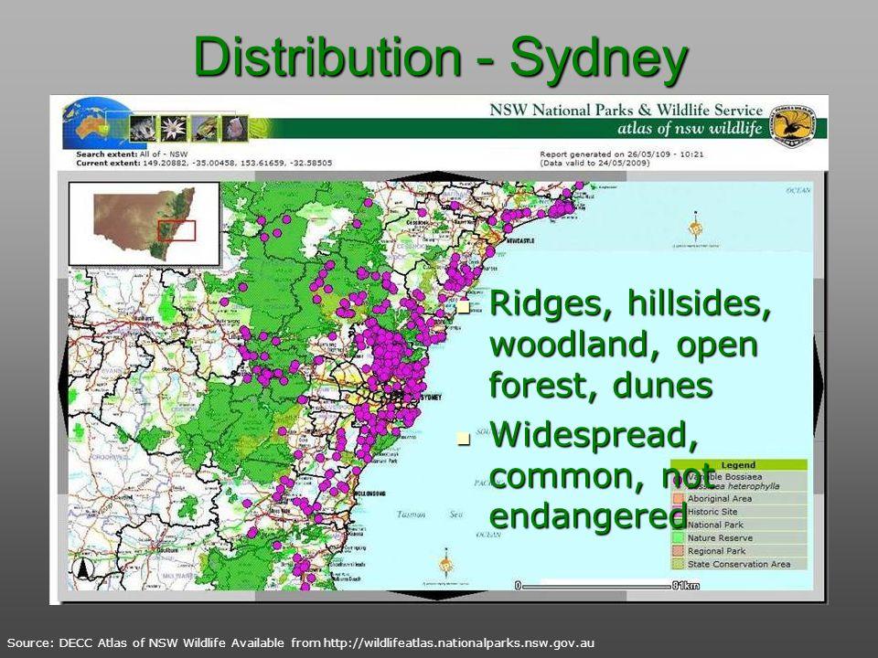 Distribution - Sydney Ridges, hillsides, woodland, open forest, dunes Ridges, hillsides, woodland, open forest, dunes Widespread, common, not endanger