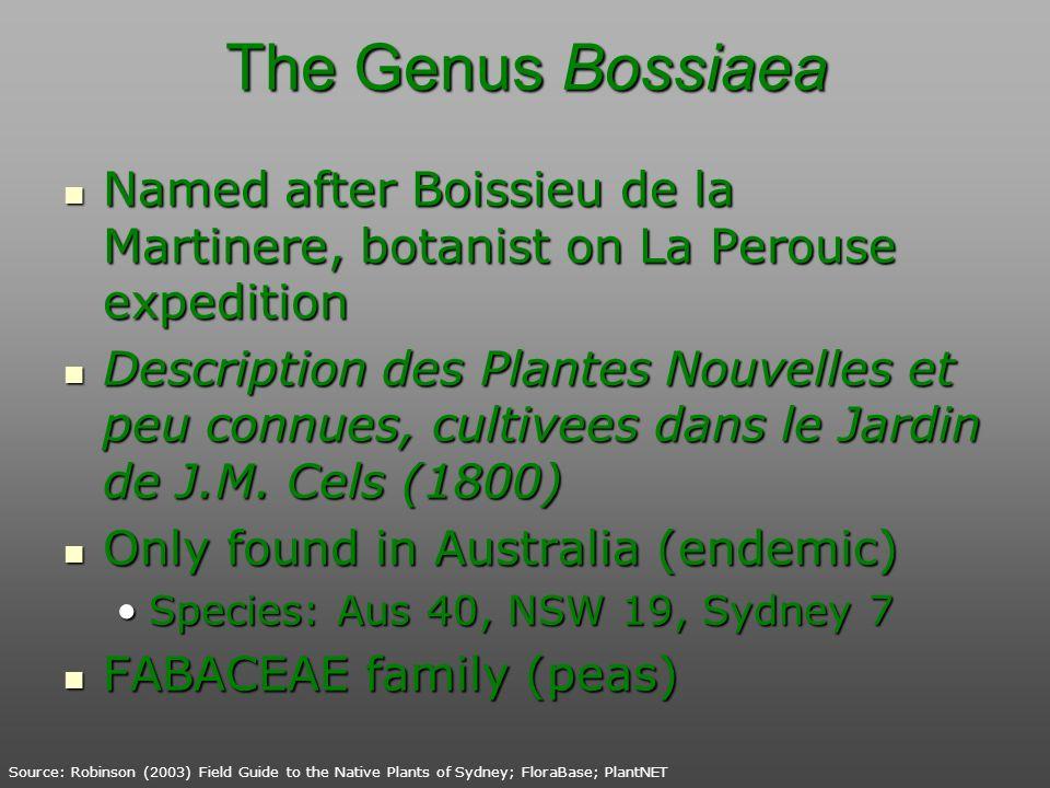 The Genus Bossiaea Named after Boissieu de la Martinere, botanist on La Perouse expedition Named after Boissieu de la Martinere, botanist on La Perous