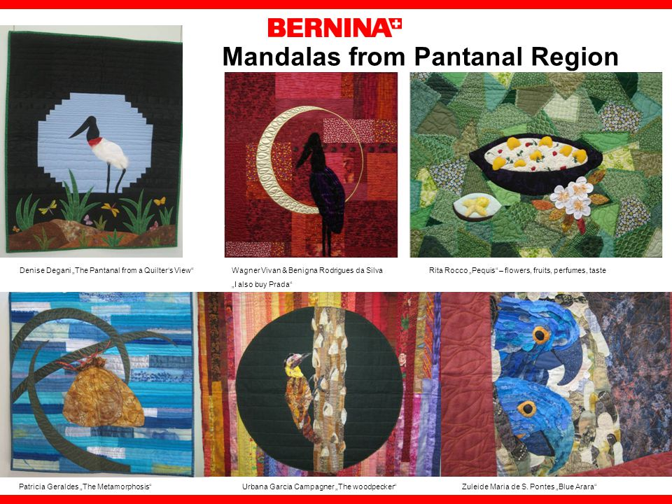 Mandalas from Pantanal Region Denise Degani The Pantanal from a Quilters View Wagner Vivan & Benigna Rodrigues da Silva Rita Rocco Pequis – flowers, fruits, perfumes, taste I also buy Prada Patricia Geraldes The Metamorphosis Urbana Garcia Campagner The woodpecker Zuleide Maria de S.