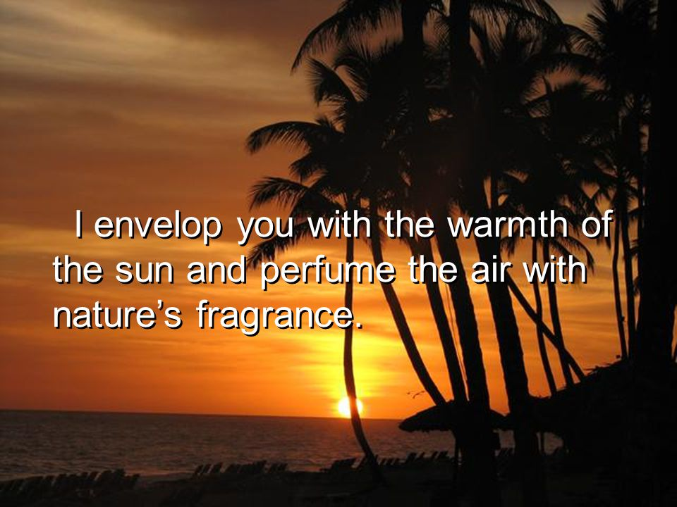 I envelop you with the warmth of the sun and perfume the air with natures fragrance.