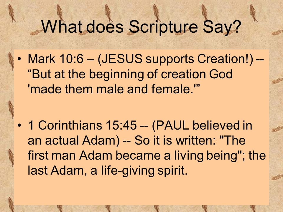 What does Scripture Say.