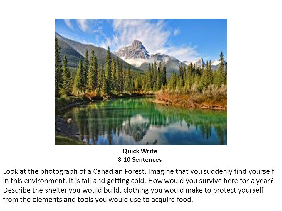 Quick Write 8-10 Sentences Look at the photograph of a Canadian Forest. Imagine that you suddenly find yourself in this environment. It is fall and ge