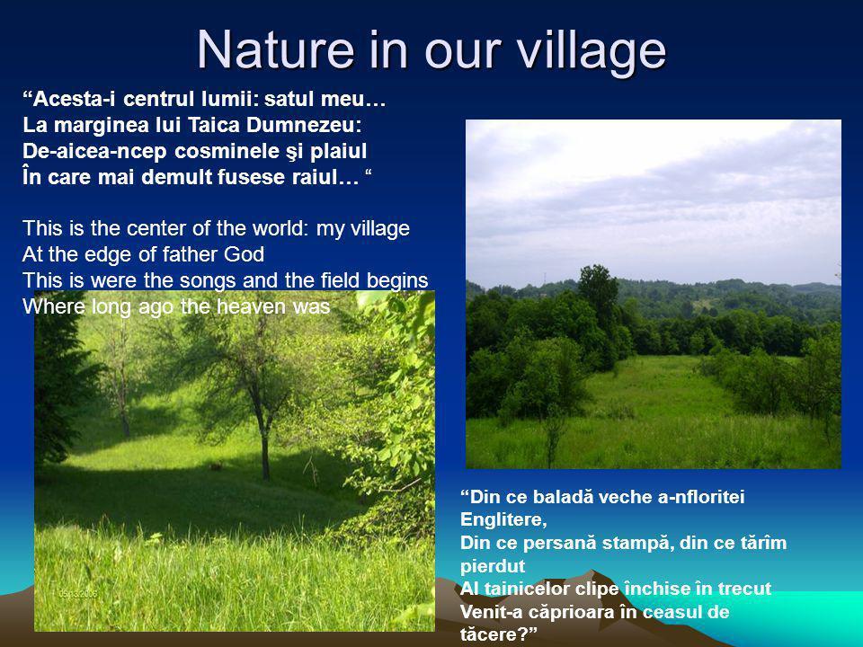 Nature in our village Din ce baladă veche a-nfloritei Englitere, Din ce persană stampă, din ce tărîm pierdut Al tainicelor clipe închise în trecut Venit-a căprioara în ceasul de tăcere.