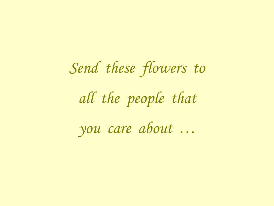 Send these flowers to all the people that you care about …