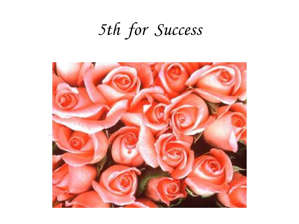5th for Success