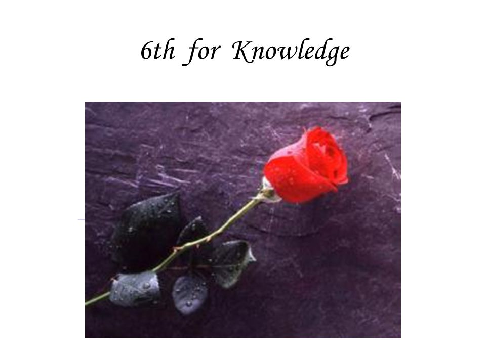 6th for Knowledge
