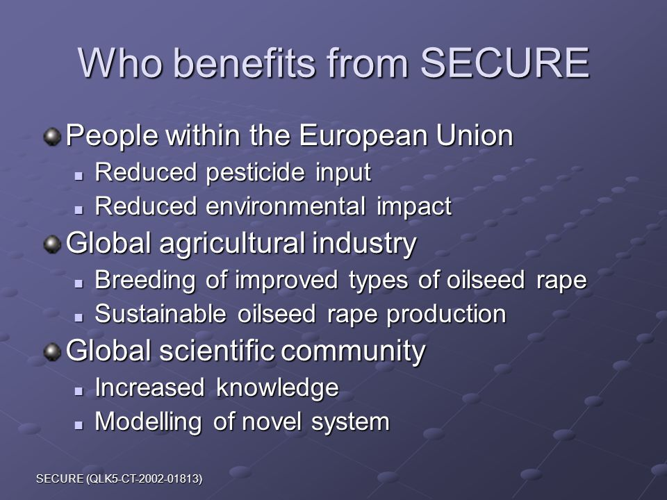 SECURE (QLK5-CT-2002-01813) Who benefits from SECURE People within the European Union Reduced pesticide input Reduced pesticide input Reduced environmental impact Reduced environmental impact Global agricultural industry Breeding of improved types of oilseed rape Breeding of improved types of oilseed rape Sustainable oilseed rape production Sustainable oilseed rape production Global scientific community Increased knowledge Increased knowledge Modelling of novel system Modelling of novel system