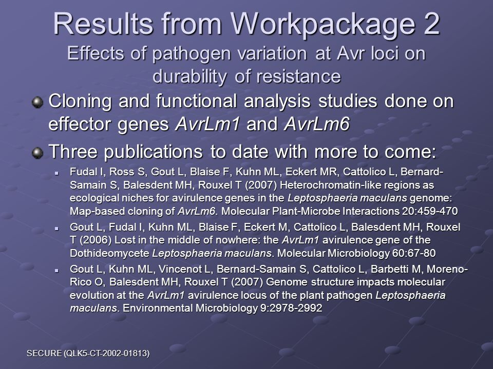 SECURE (QLK5-CT-2002-01813) Results from Workpackage 2 Effects of pathogen variation at Avr loci on durability of resistance Cloning and functional analysis studies done on effector genes AvrLm1 and AvrLm6 Three publications to date with more to come: Fudal I, Ross S, Gout L, Blaise F, Kuhn ML, Eckert MR, Cattolico L, Bernard- Samain S, Balesdent MH, Rouxel T (2007) Heterochromatin-like regions as ecological niches for avirulence genes in the Leptosphaeria maculans genome: Map-based cloning of AvrLm6.