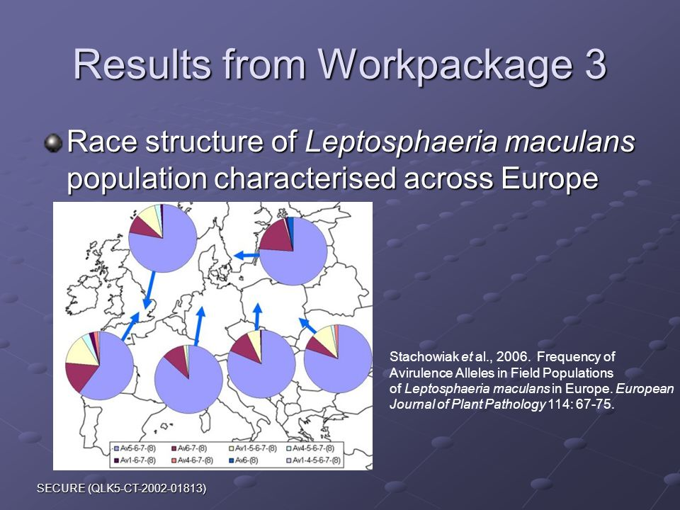 SECURE (QLK5-CT-2002-01813) Results from Workpackage 3 Race structure of Leptosphaeria maculans population characterised across Europe Stachowiak et al., 2006.