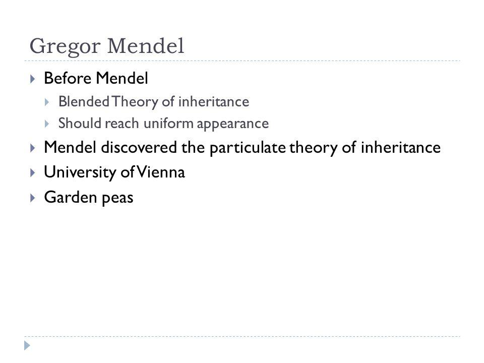 Gregor Mendel Before Mendel Blended Theory of inheritance Should reach uniform appearance Mendel discovered the particulate theory of inheritance Univ