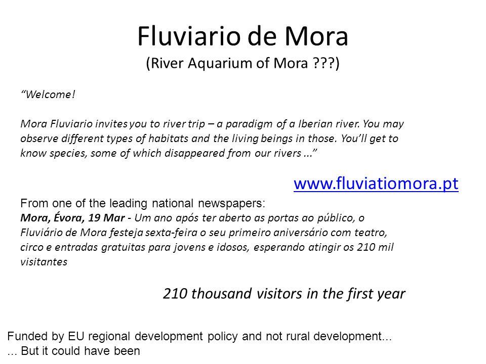 www.fluviatiomora.pt Welcome.