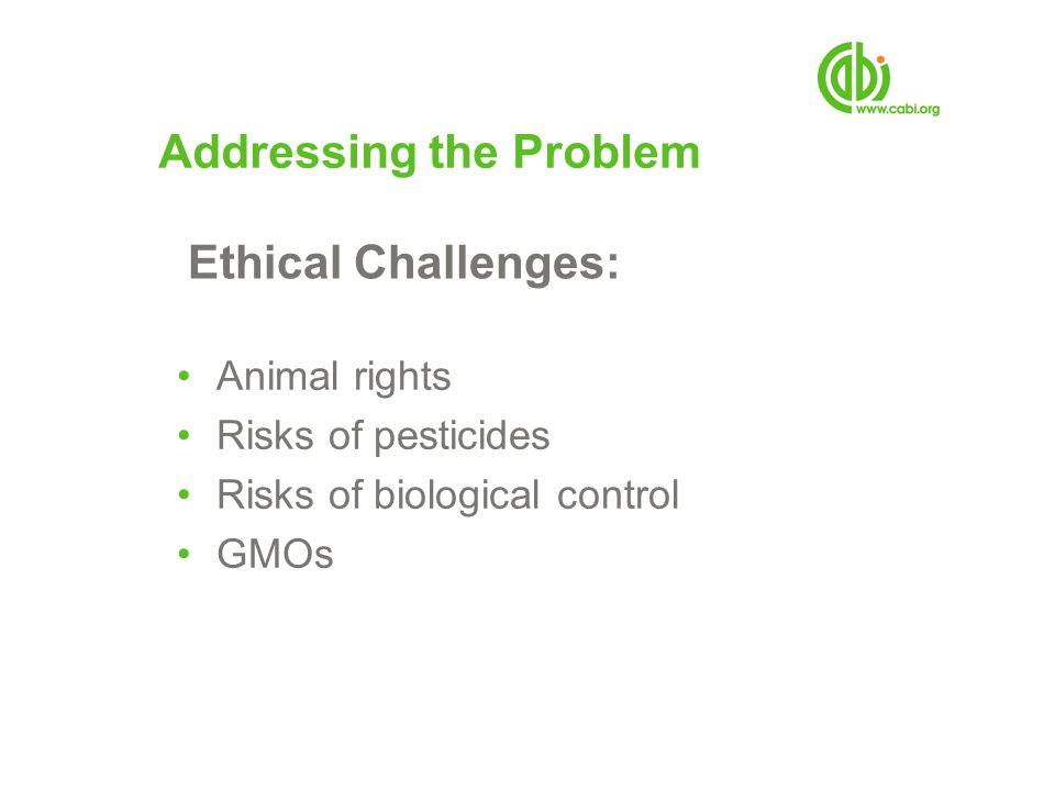 Addressing the Problem Animal rights Risks of pesticides Risks of biological control GMOs Ethical Challenges: