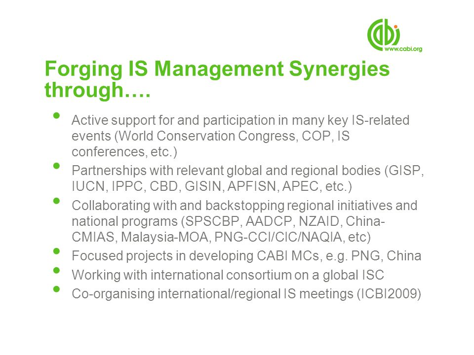 Forging IS Management Synergies through….