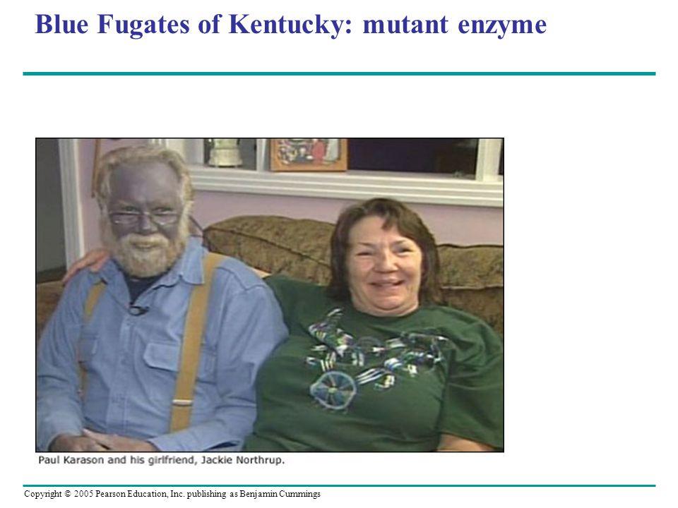 Copyright © 2005 Pearson Education, Inc. publishing as Benjamin Cummings Blue Fugates of Kentucky: mutant enzyme