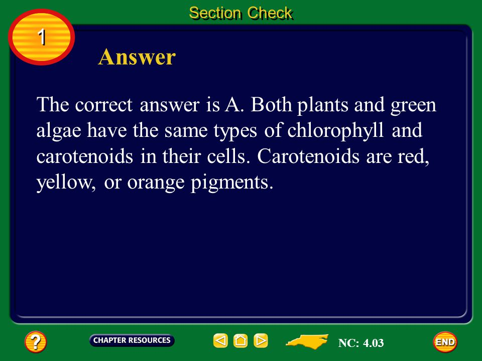 1 1 Section Check Question 2 Because plants and green ______use the same pigments for photosynthesis, scientists think the two have a common ancestor.