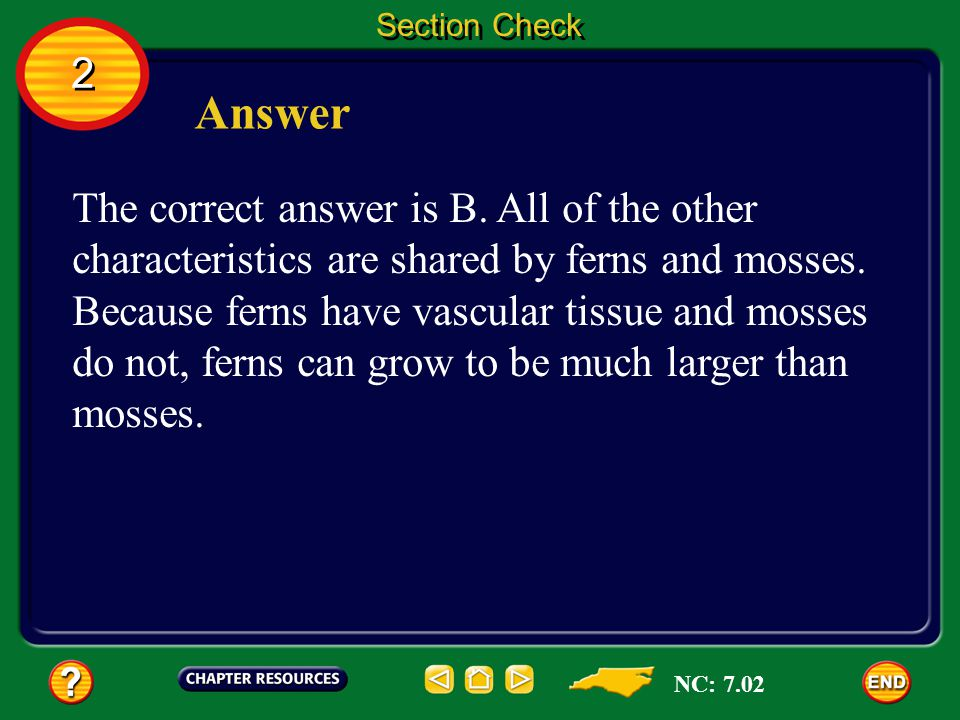 2 2 Section Check Question 2 How are ferns different from mosses? A. they are seedless B. they are vascular C. they contain chlorophyll D. they produc