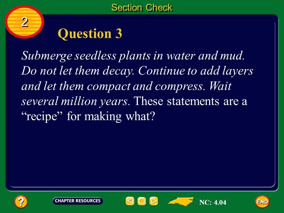 2 2 Section Check Answer The correct answer is B. All of the other characteristics are shared by ferns and mosses. Because ferns have vascular tissue