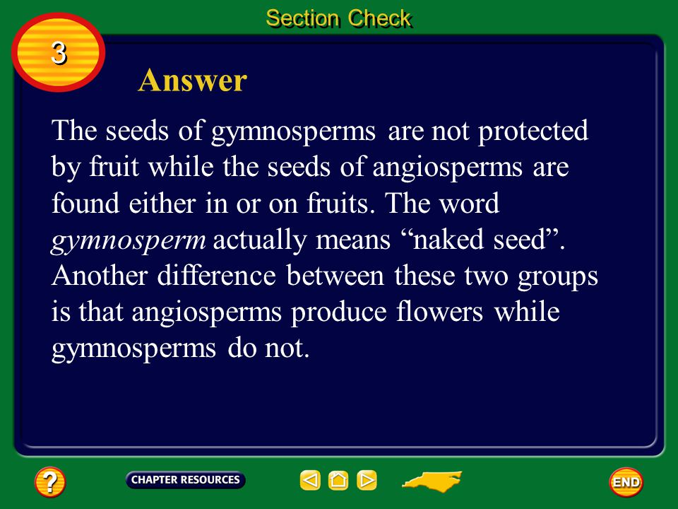 3 3 Section Check Question 2 What is the difference between where the seeds of gymnosperms are found and where the seeds of angiosperms are found?