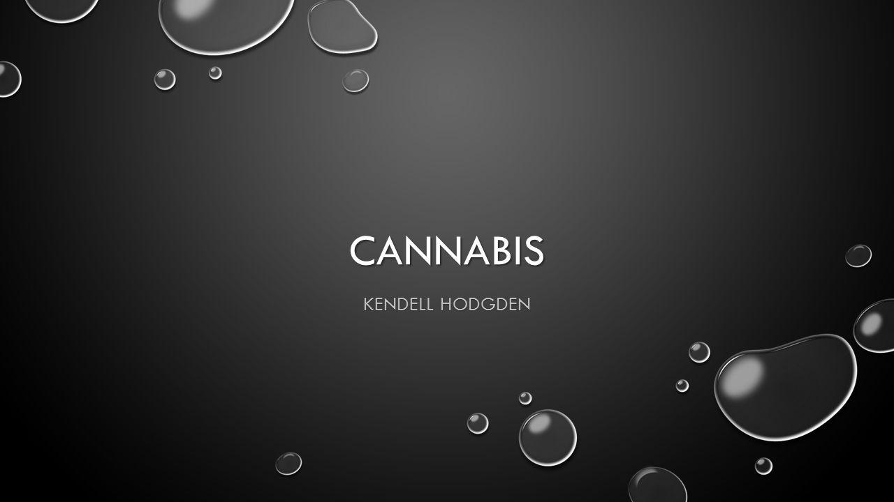 CANNABIS KENDELL HODGDEN