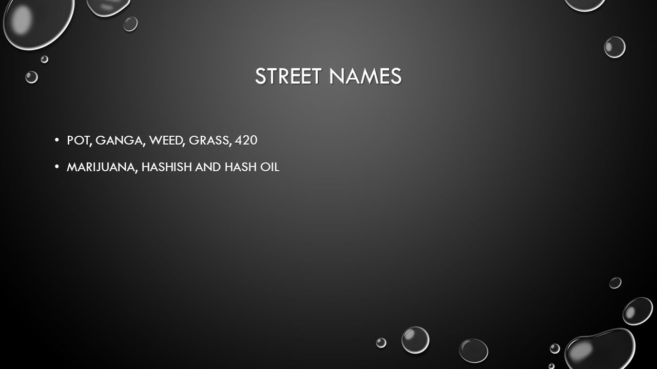 STREET NAMES POT, GANGA, WEED, GRASS, 420 POT, GANGA, WEED, GRASS, 420 MARIJUANA, HASHISH AND HASH OIL MARIJUANA, HASHISH AND HASH OIL