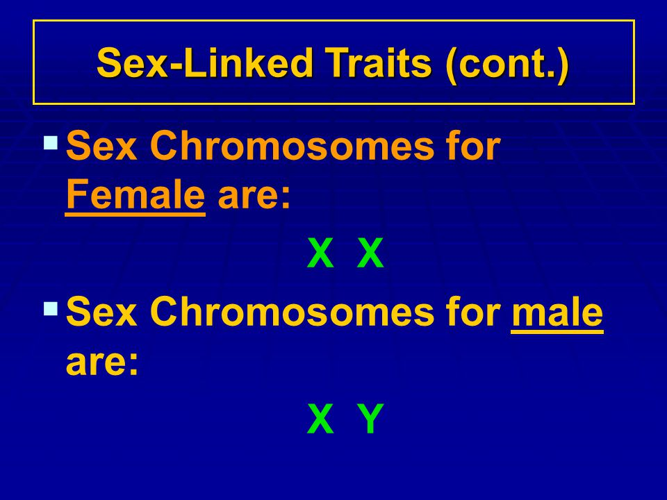 Sex Chromosomes for Female are: X Sex Chromosomes for male are: X Y Sex-Linked Traits (cont.)
