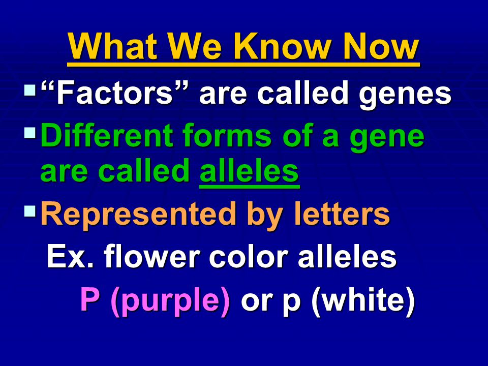 What We Know Now Factors are called genes Factors are called genes Different forms of a gene are called alleles Different forms of a gene are called a