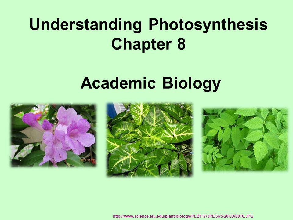 Understanding Photosynthesis Chapter 8 Academic Biology http://www.science.siu.edu/plant-biology/PLB117/JPEGs%20CD/0076.JPG