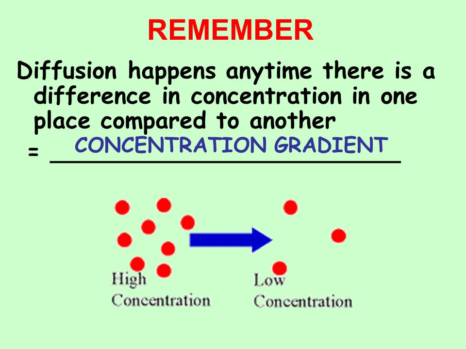 Diffusion happens anytime there is a difference in concentration in one place compared to another = ________________________ CONCENTRATION GRADIENT