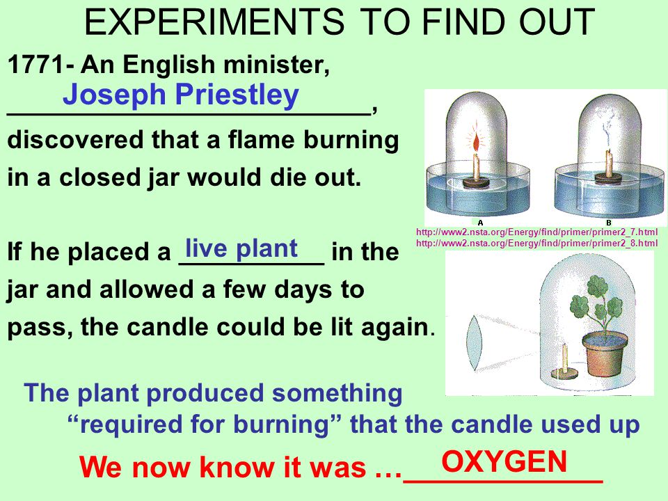 EXPERIMENTS TO FIND OUT 1771- An English minister, _________________________, discovered that a flame burning in a closed jar would die out. If he pla